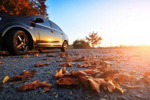 Autumn Car Detailing